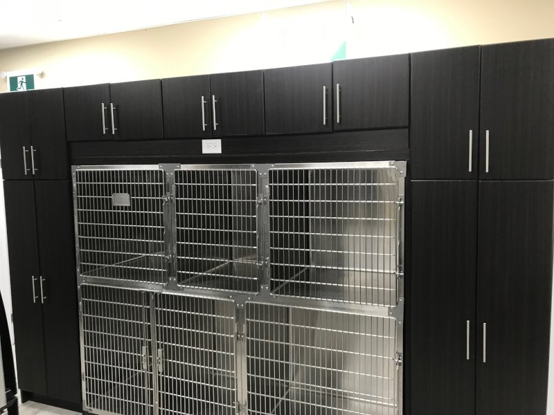 The kennels in the back room