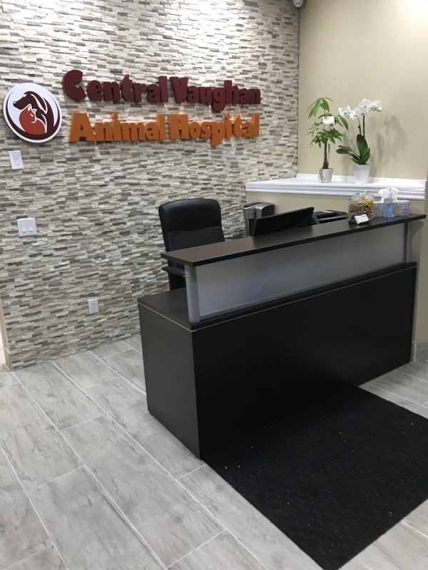 The front reception area of Central Vaughan Animal Hospital